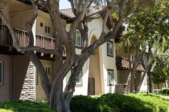 El Mirador Apartments 165 S Bernardo Avenue Sunnyvale Ca Rentcafe