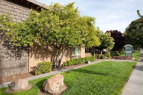 Tanglewood Apartments 970 Meridian Avenue San Jose Ca