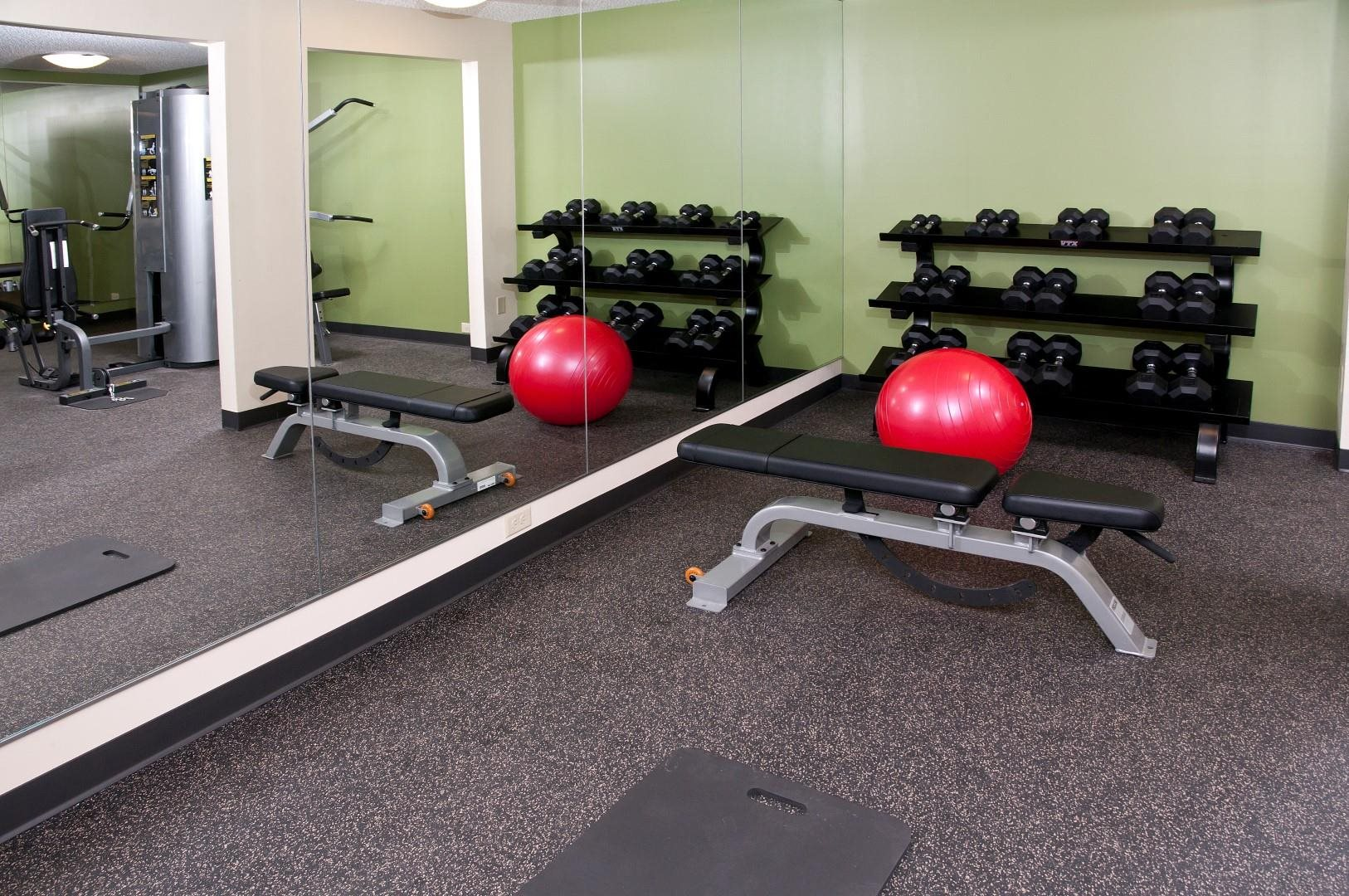 Assorted Free Weights in Fitness Room of 2800 Girard apartments in Minneapolis, MN