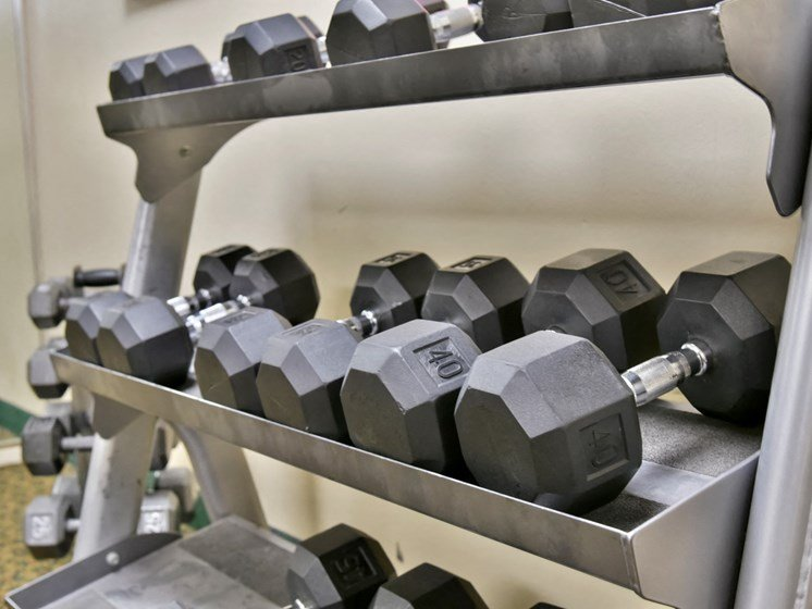 Free Weights In Gym at Hillsborough Apartments, Minnesota