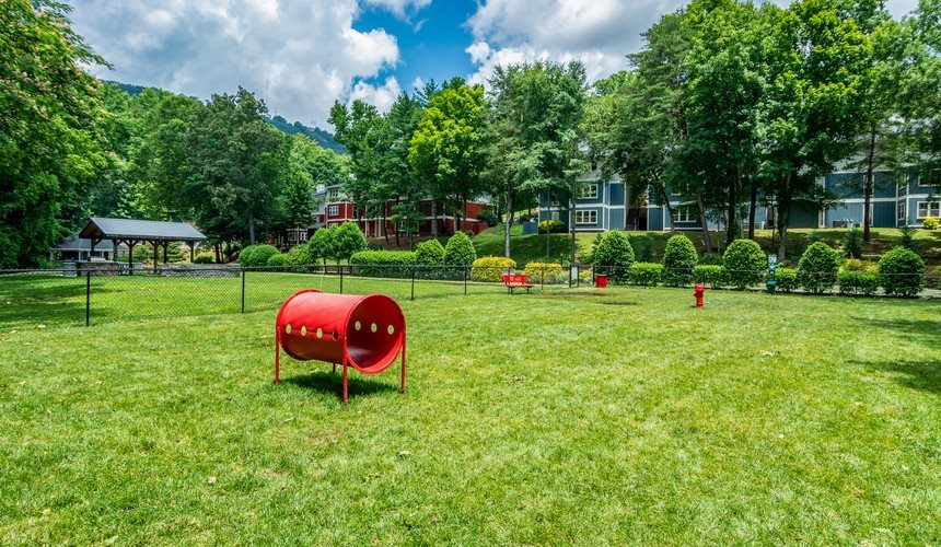 Pet Friendly Bark Park at Hawthorne Creekside in Chattanooga TN