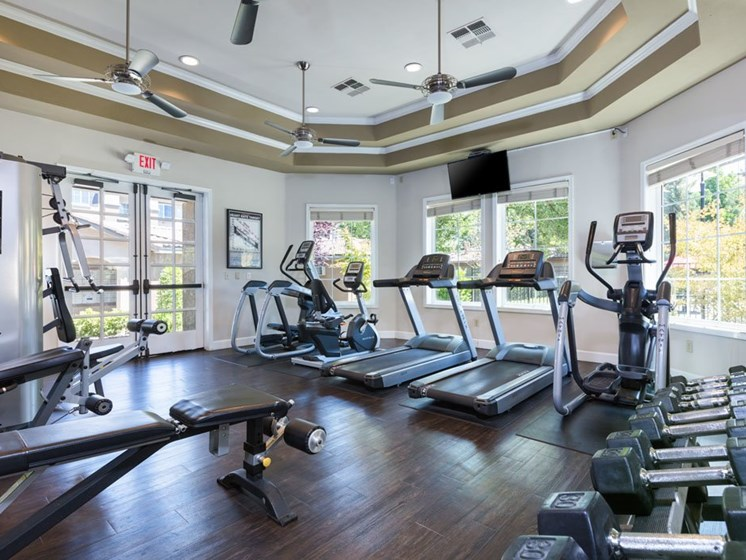 Gym with cardio equipment and natural light