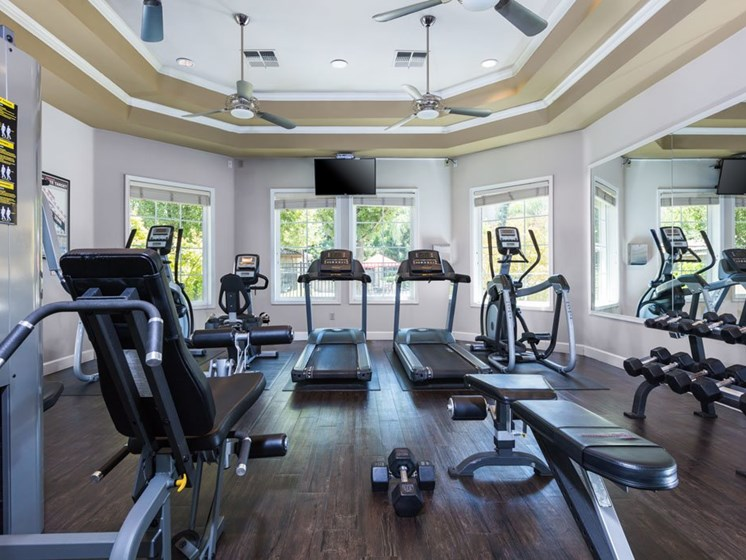 Gym with cardio equipment, free weights and TV