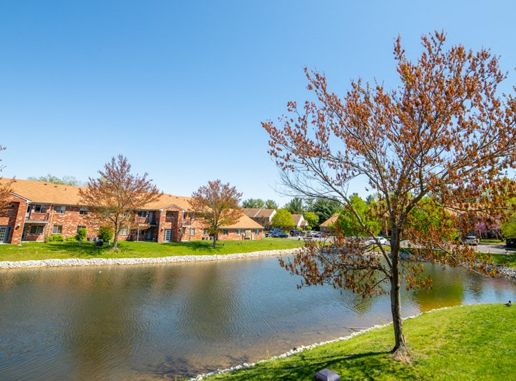 Pond view with trees and apartment building