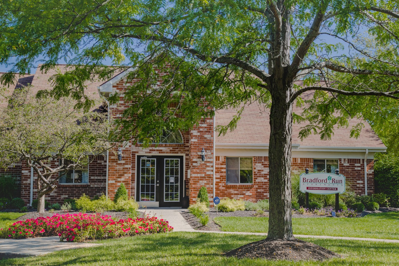 mature tree and landscaping outside leasing center