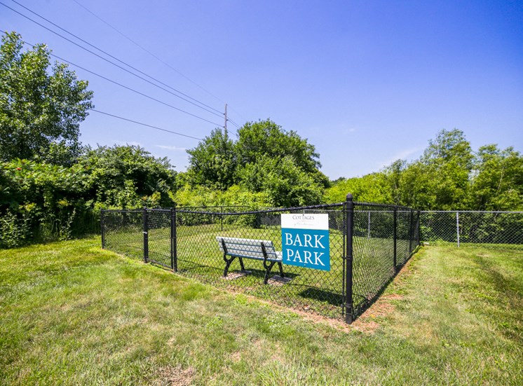 dog park with fence in grass