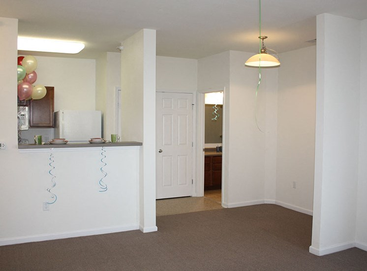 living area and kitchen in apartment