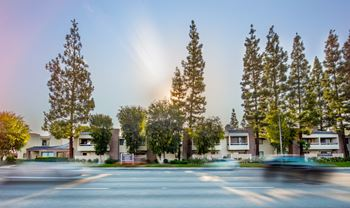 7810 Topanga Canyon Blvd 2 Beds Apartment for Rent Photo Gallery 1