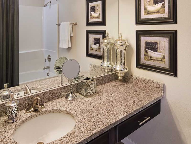 Updated Bathrooms at Paces Ridge at Vinings, Atlanta, GA