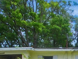 10446 Greenhaven Dr 3 Beds House for Rent Photo Gallery 1
