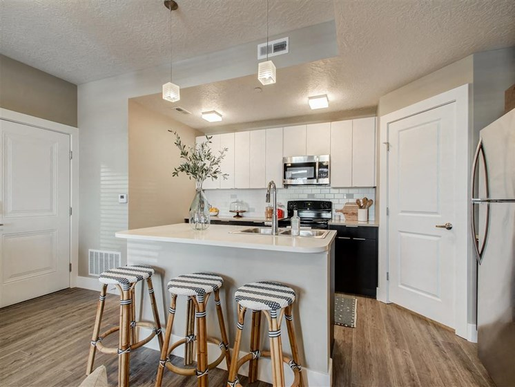 apartment bar and kitchen