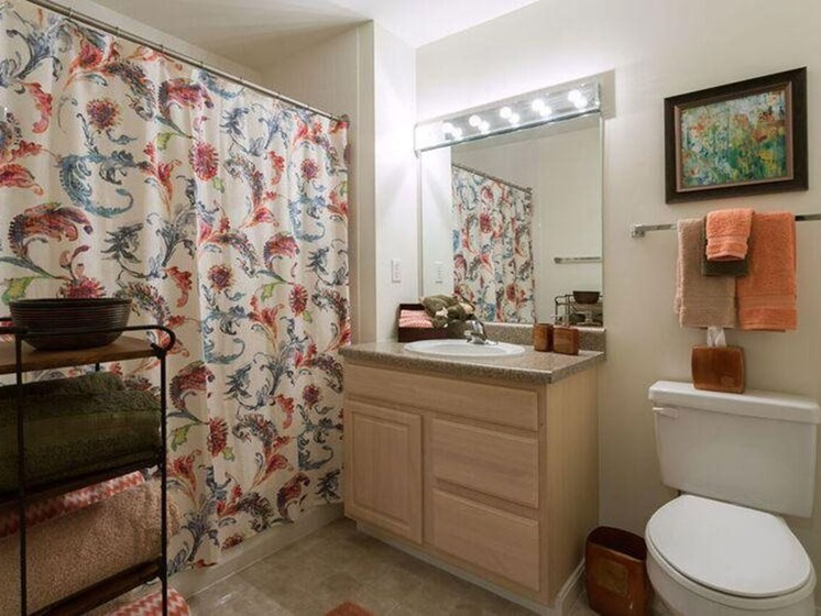 Bathroom With Vanity and Shower at The Preserve Apartments in Walpole, MA