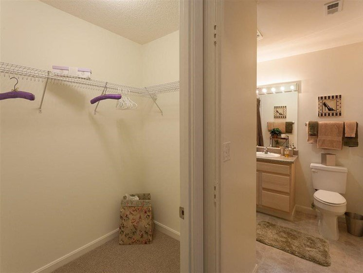 Spacious Closets at The Preserve Apartments, 100 Hilltop Dr, Walpole, MA 02081
