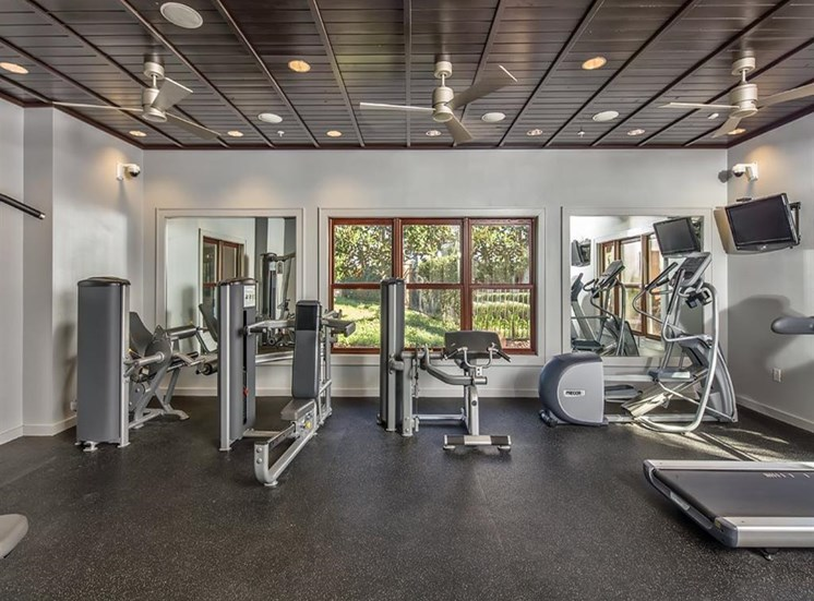 24 hour Fitness Center at Verano Apartments, Florida, 34744