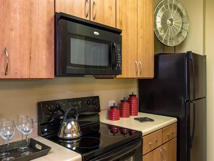 Black Appliance Package at Verano Apartments, Kissimmee