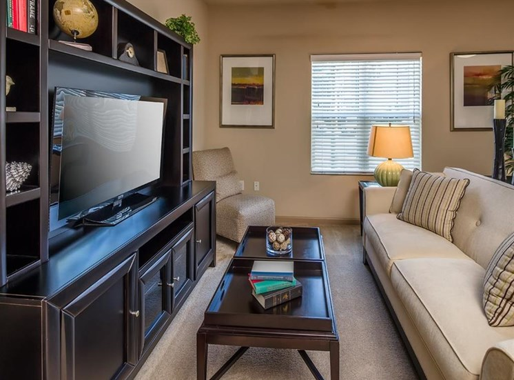 Plush Carpeting at Verano Apartments, Kissimmee, 34744