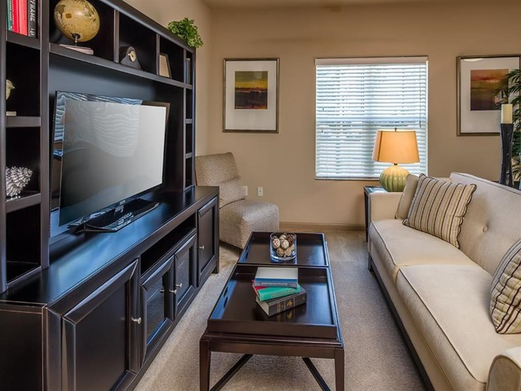 Plush Carpeting at Verano Apartments, Kissimmee, 34744