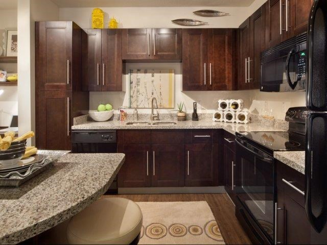 Rich Shaker Style Cabinetry at Altis at Grand Cypress, Lutz, 33549