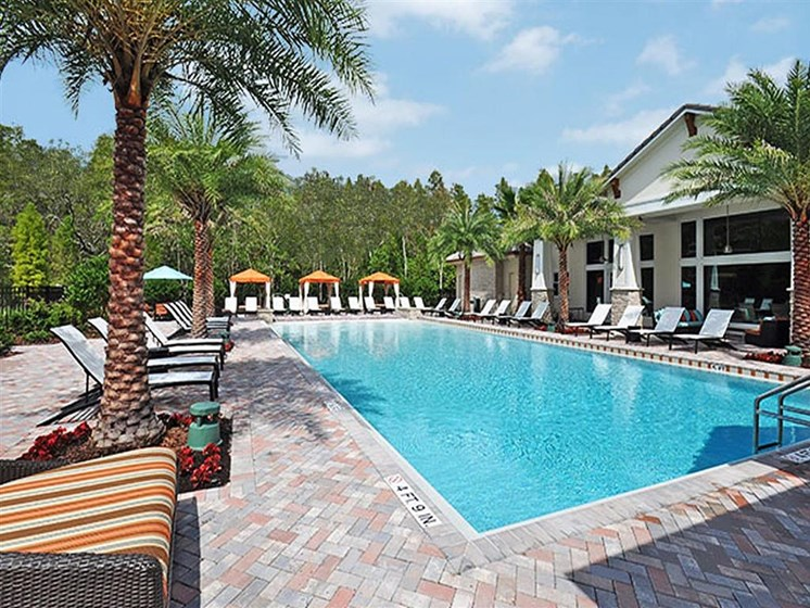Glimmering Pool at Altis at Grand Cypress, Florida, 33549