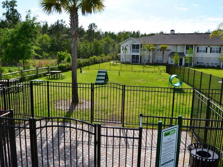 Pet Park at Altis at Grand Cypress, Lutz, FL, 33549
