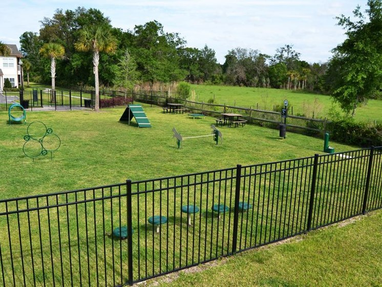 Furry Friends Pet Park at Altis at Grand Cypress, Lutz, FL