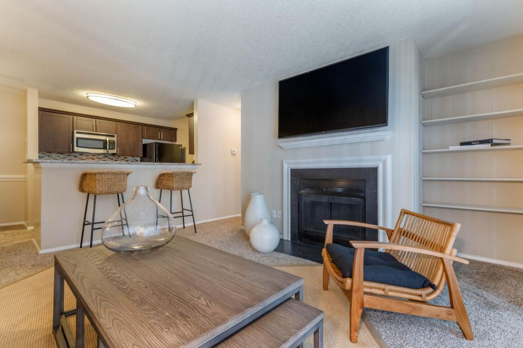 Southpark Commons Apartment Homes|Fully Furnished Living Room