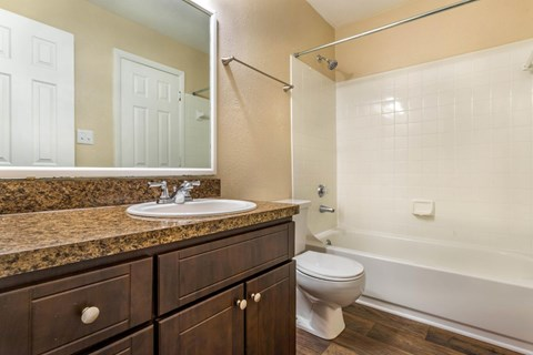Southpark Commons Apartment Homes|Bathroom