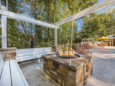 Southpark Commons Apartment Homes|Fire Pit