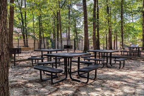 Regency Park|Outdoor Picnic Seating