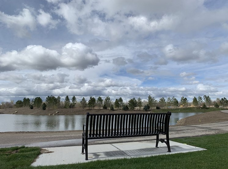 Park Bench with Lake View