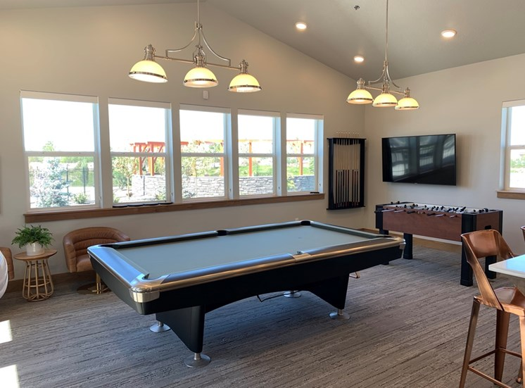 Clubhouse Pool Table