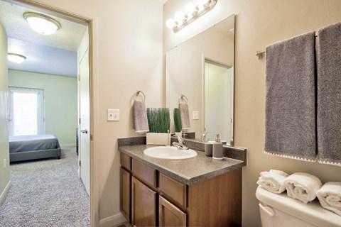bathroom and bathroom sink