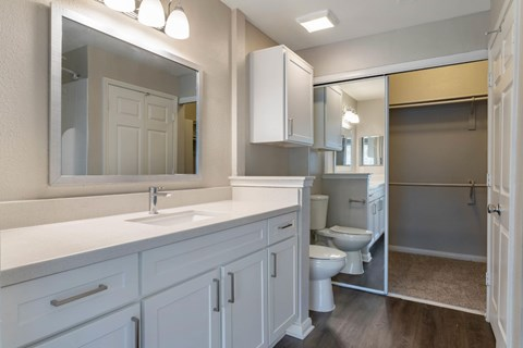 Bathroom with Vanity Lights and Spacious Closet