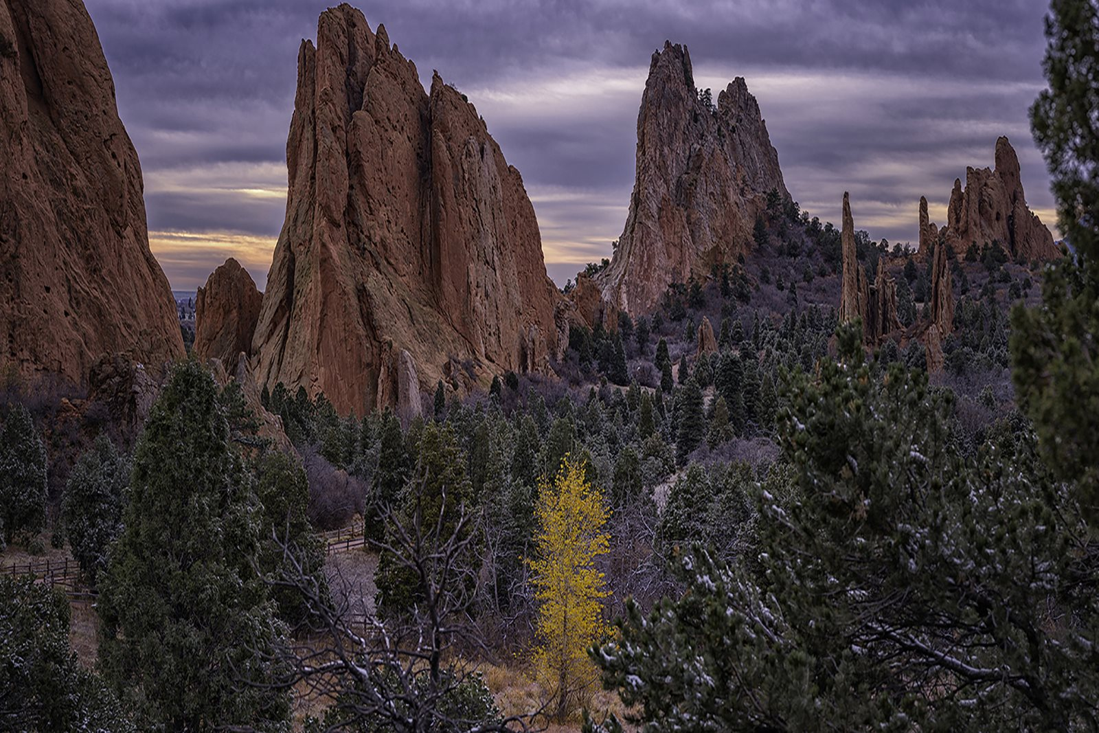 Neighborhood - Garden of the Gods