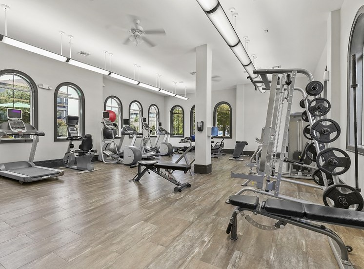 High-Tech Cardio Fitness Center with Free Weights