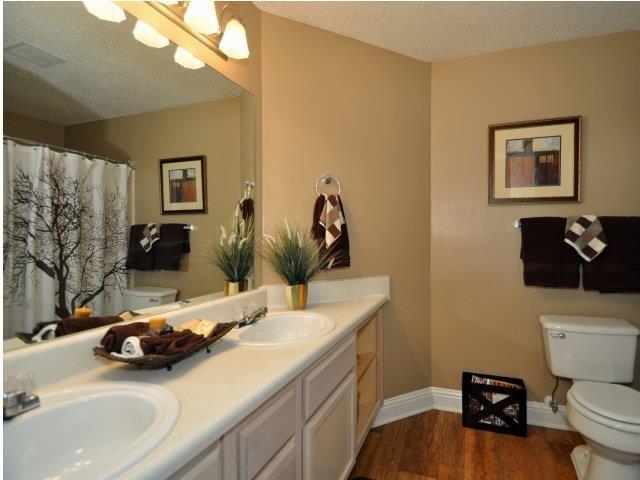 Upgraded Bathroom Fixtures at Lullwater at Calumet, Newnan, GA