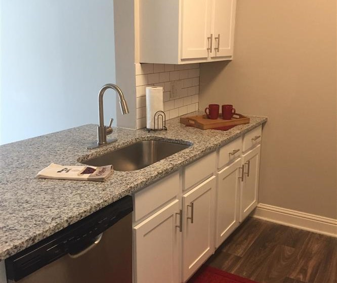 Stainless Steel Sink With Faucet at Lullwater at Calumet, Newnan