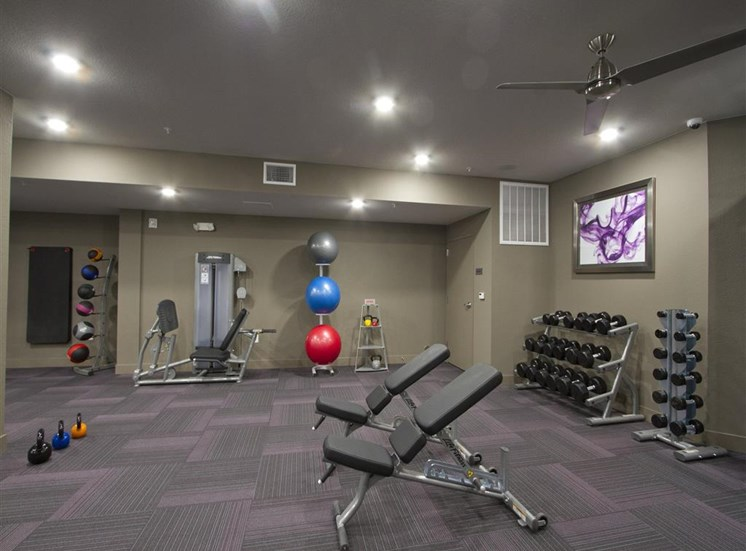 Fitness Studio with Wellness Spa