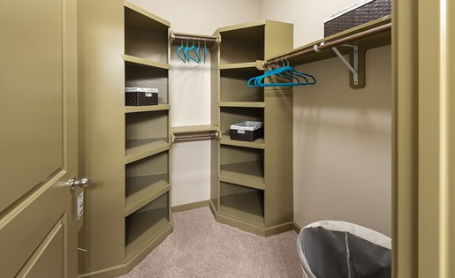 Image of the walk in closets at Aliso at Briar Forest
