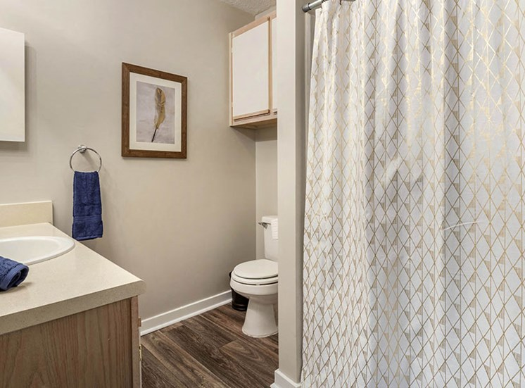Spacious Bathrooms at Ridgeland Place Apartment Homes, Ridgeland, Mississippi