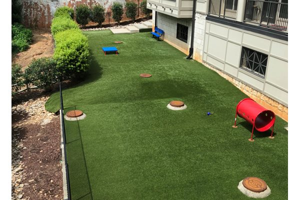 Dog Park with Astroturf at St. Marys Square Apartments, North Carolina