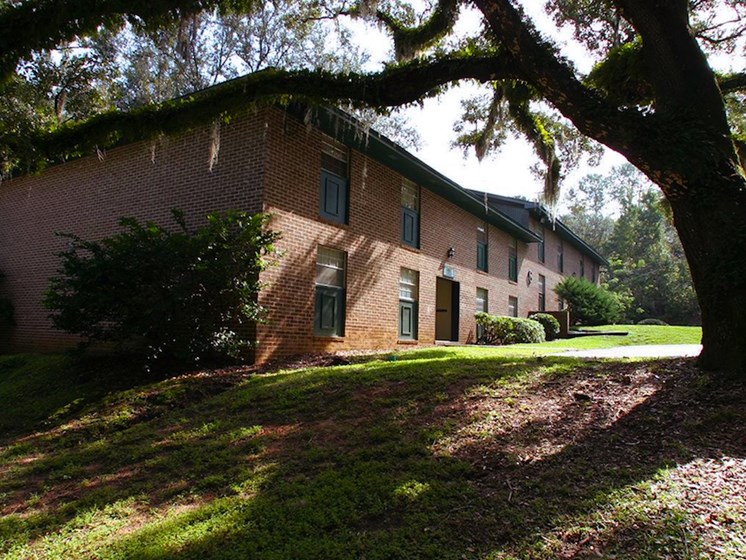 oak trees at Heritage Park Apartments in Tallahassee, FL 32304