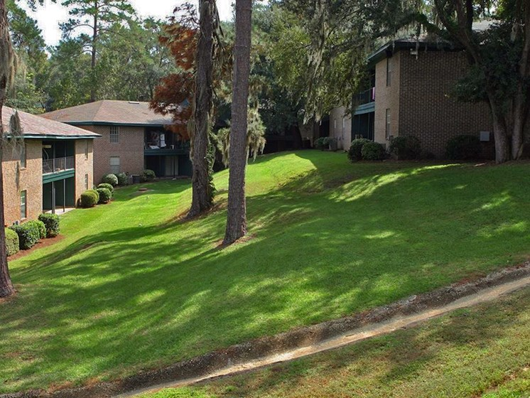 rolling hills at Heritage Park Apartments in Tallahassee, FL 32304