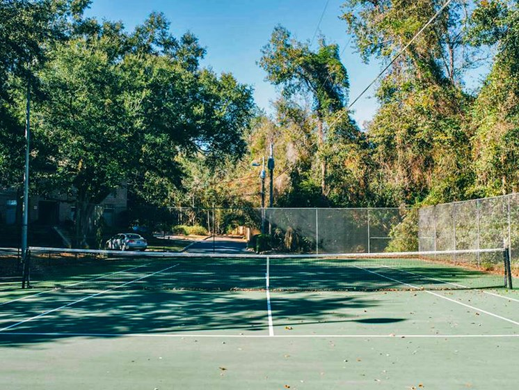 tennis court at Heritage Park Apartments in Tallahassee, FL 32304