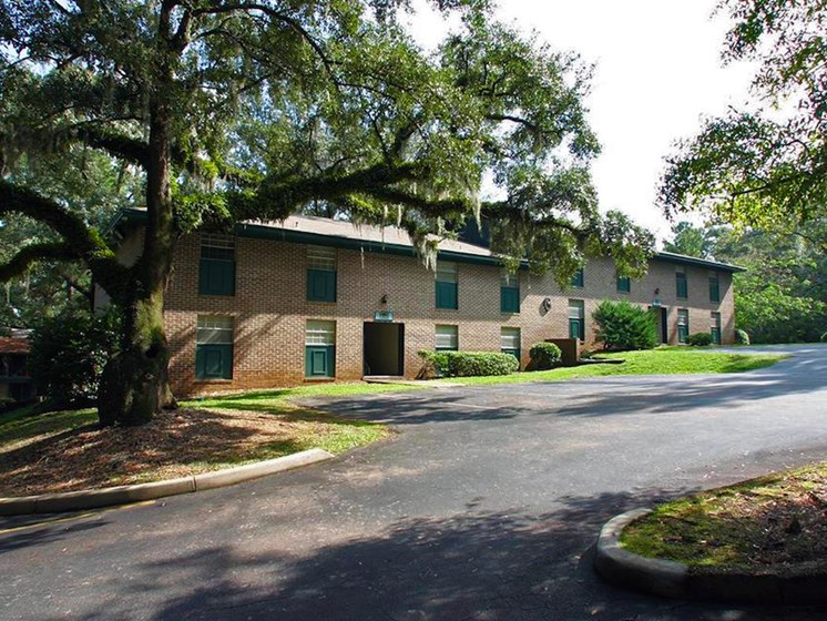 mature trees at Heritage Park Apartments in Tallahassee, FL 32304