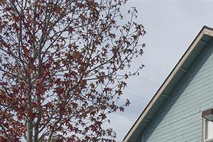 Garage View at Pacific Vista, Monterey, 93940