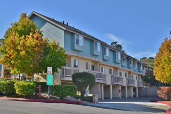 57 Soledad Dr. 1-2 Beds Apartment for Rent Photo Gallery 1