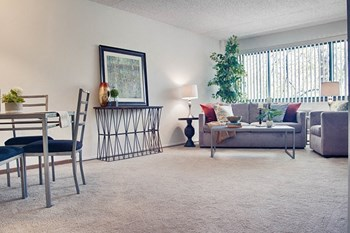 1510 Main Street 1-2 Beds Apartment for Rent Photo Gallery 1