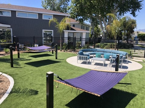 Pet Friendly Apartments in West Covina, CA - Nola624 Apartments Poolside Lounge on Grass with Hammocks and Outdoor Seating