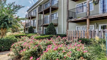 3417 Lebanon Pike 1-2 Beds Apartment for Rent Photo Gallery 1
